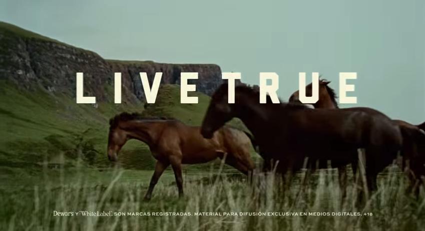 LiveTRue campaña de Dewar's