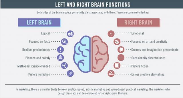 El cerebro en el Marketing