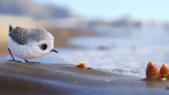 Piper es el nuevo personaje adorable de Pixar